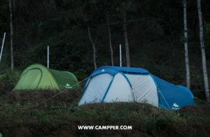 neelakurinji camping