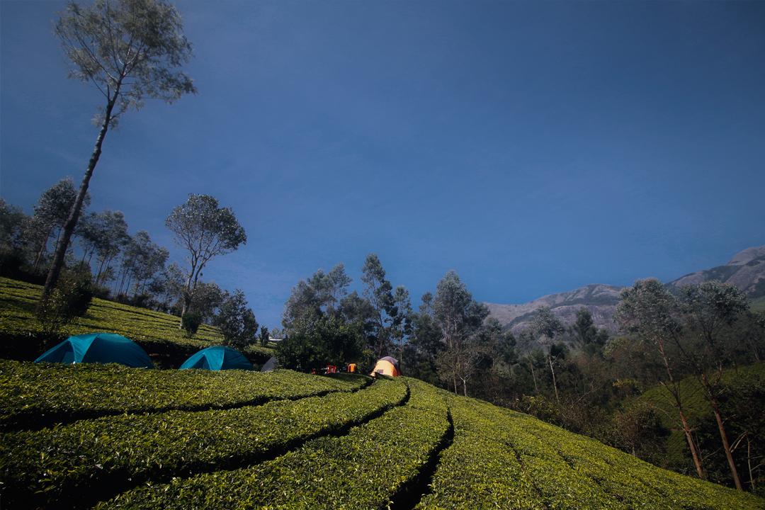 Meeshapuli Valley Camp, Suryanelli. Weekend Getaway