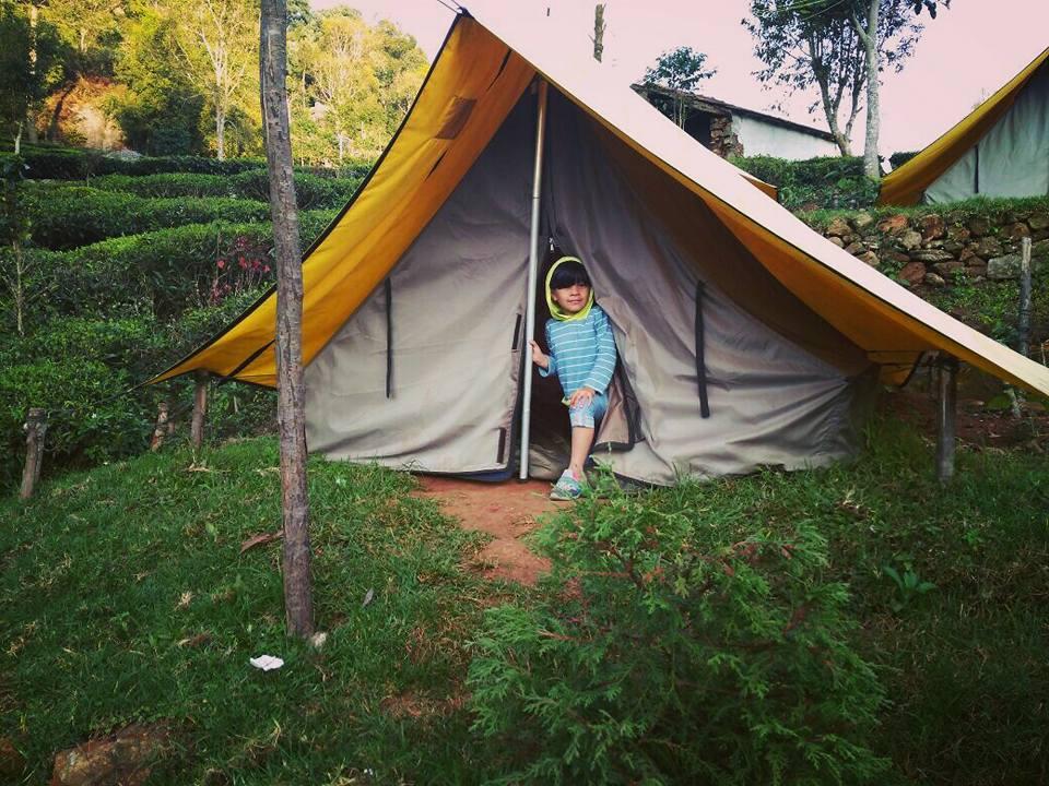 Plantation Camp at Ooty