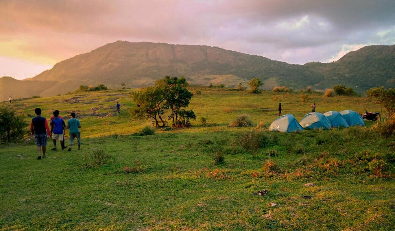 New Year Event at Thangalpara Top Camp, Vagamon