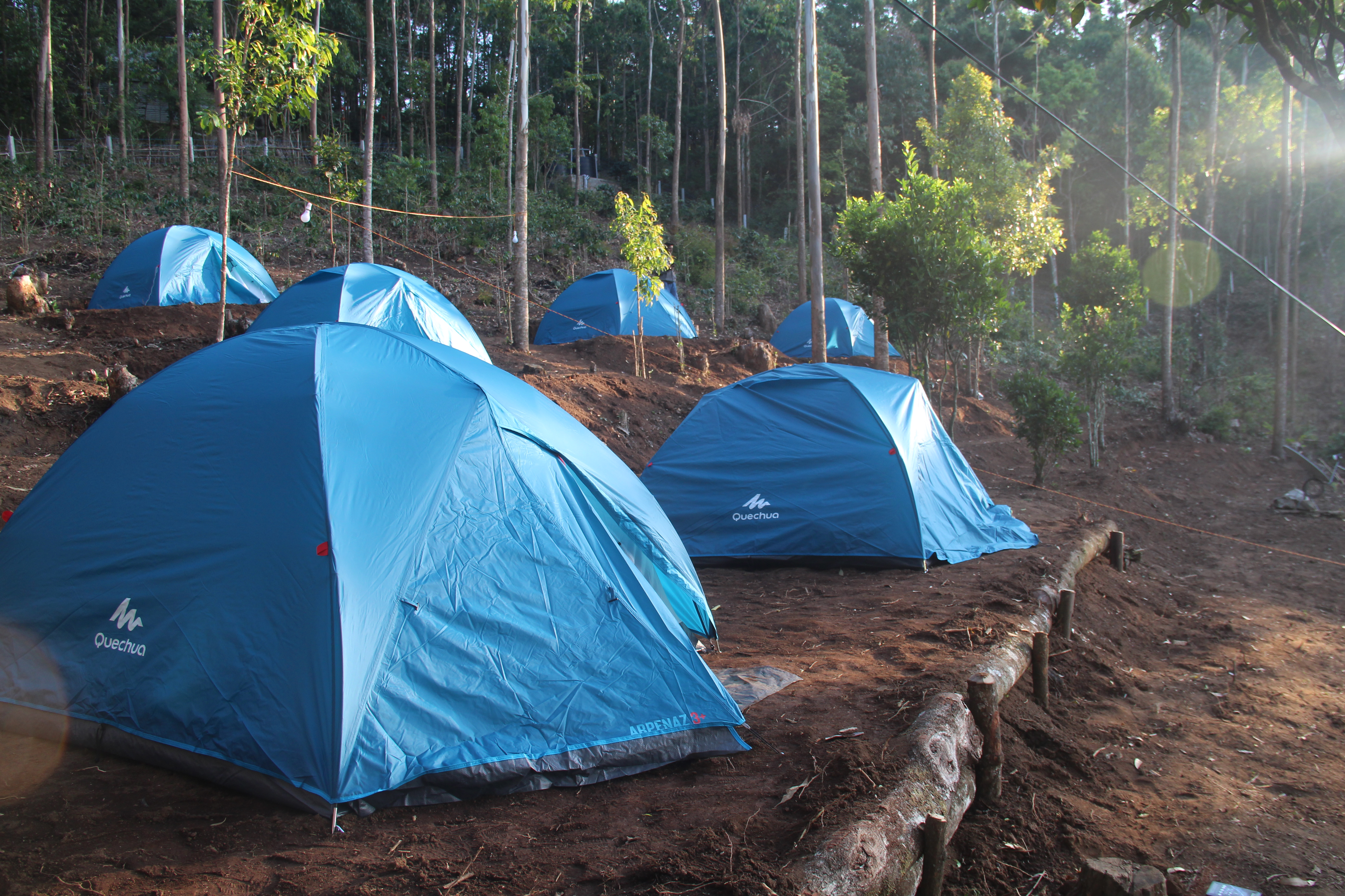 Wellness Tourism. Tents at Camp Woody