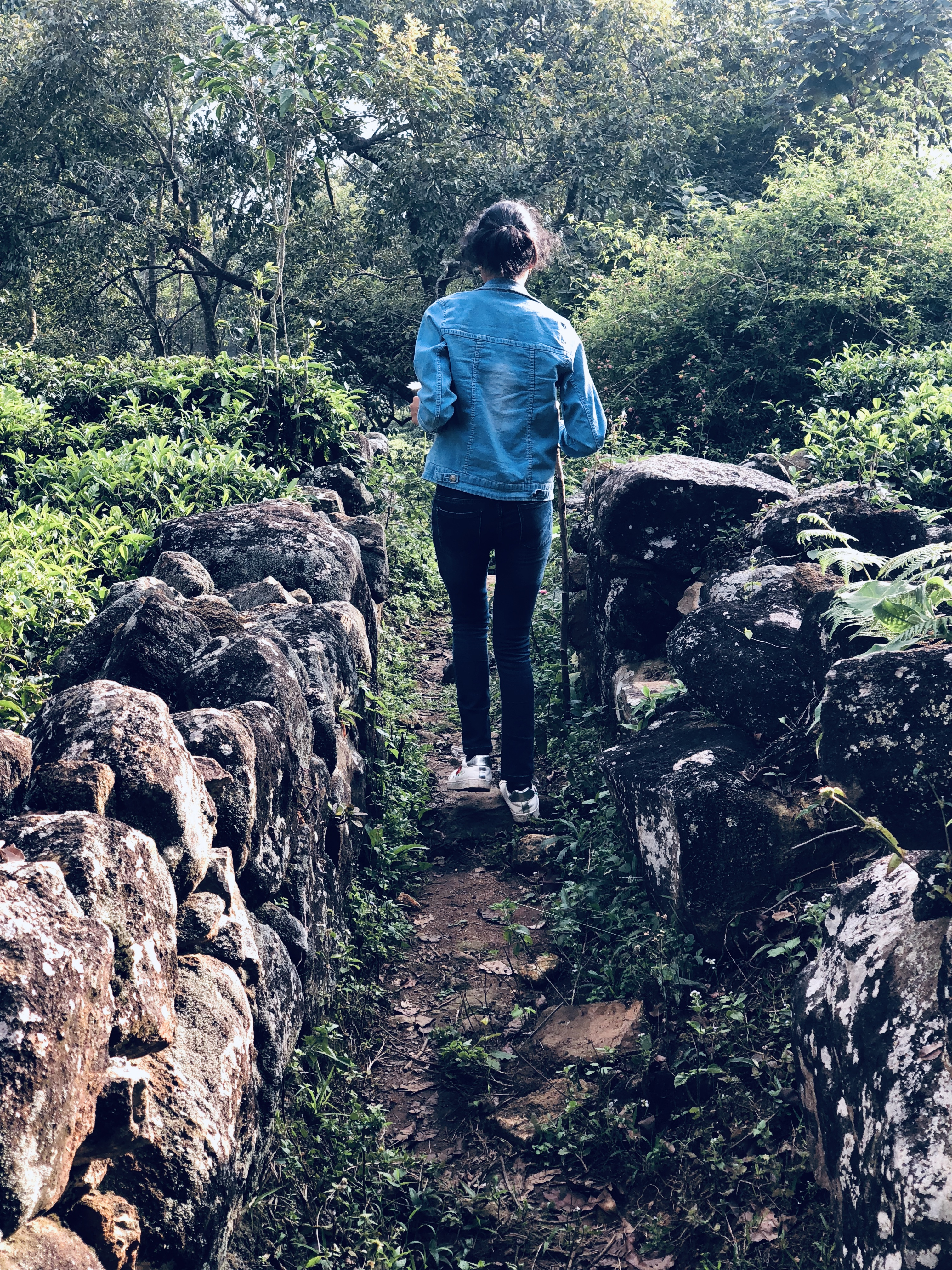 Solo Girl Traveller at Ooty
