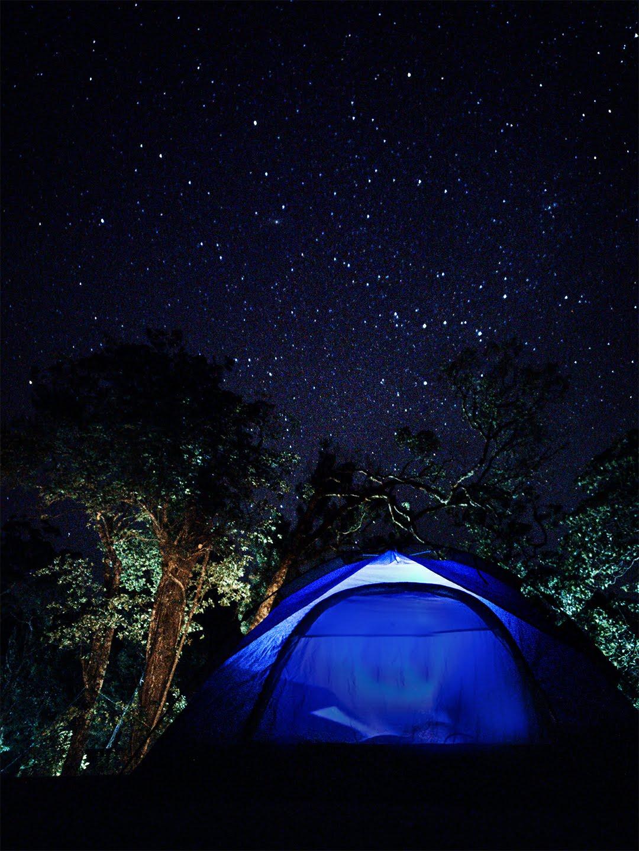 Camping Tips. Stargaze. Wild Hush 900 Kandi, Wayanad