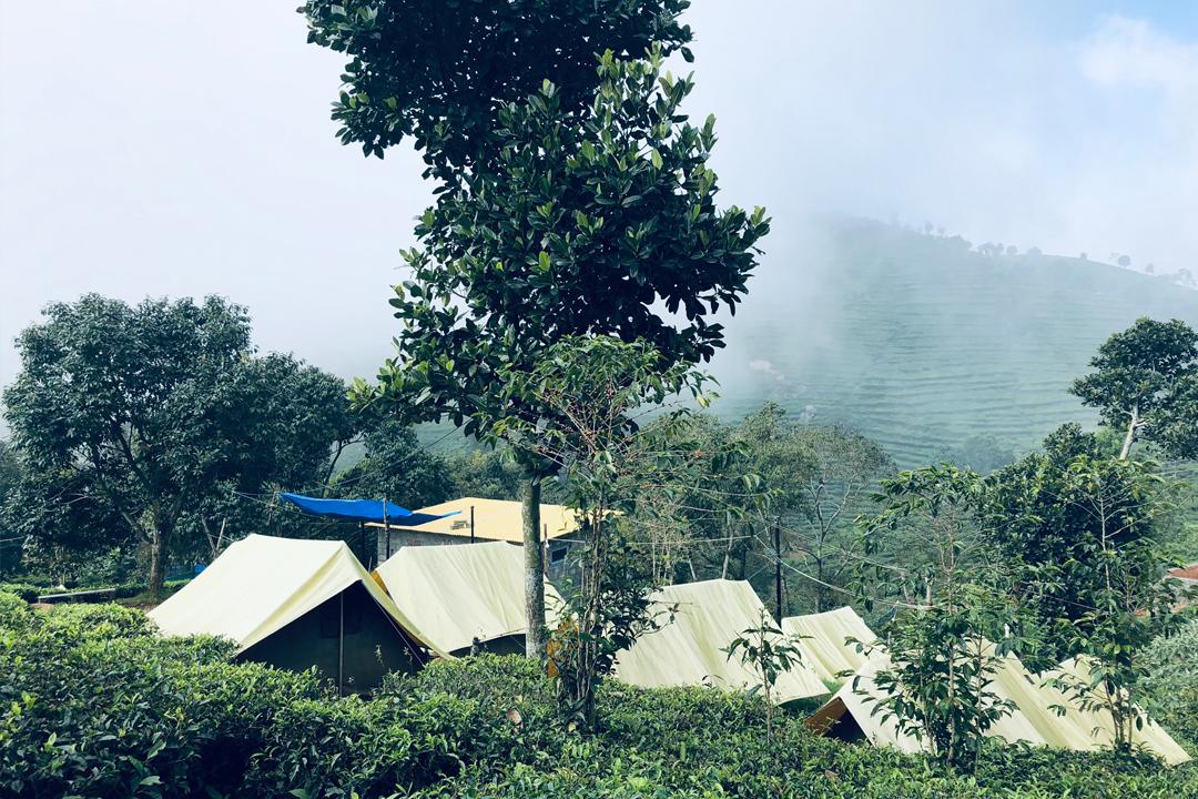 Plantation Camping at Ooty. Kottagiri. Weekend Getaway