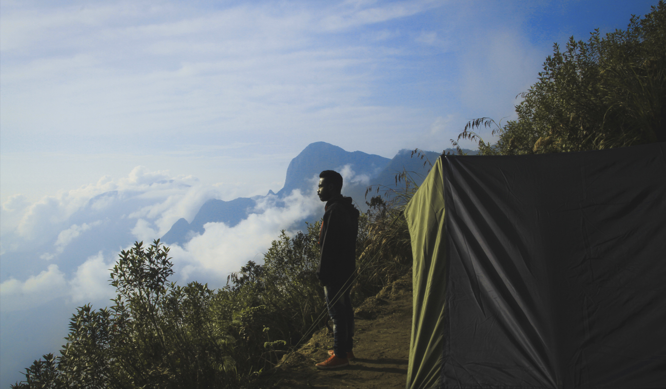 Risks of Camping_Cover
