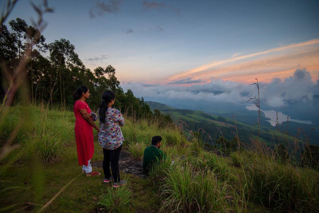 Protecting the natural world
