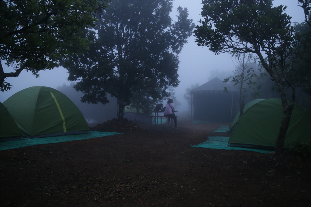 Urumbi Hill Camping in Vagamon
